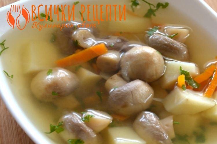 lesna-gybena-supa